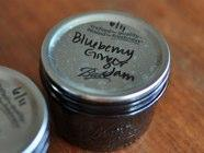 Small Batch Blueberry Ginger Jam found on PunkDomestics.com